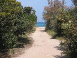 Beach at Torre Guaceto
